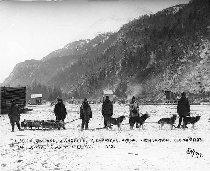 sled-dogs-alaska-skagway