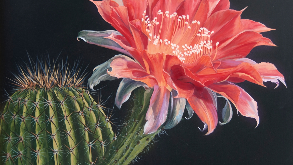 blooming-cactus-art-poem